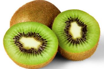Popularity of Iran in Kiwifruit Exports | International Kiwi Supplier