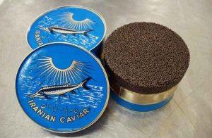 caviar supplier, caviar suppliers, iranian caviar supplier, caviar suppliers, iran caviar supplier, iran caviar suppliers, international caviar supplier, iran caviar, iranian caviar, caviar suppliers in iran, caviar for sale, caviar wholesalers