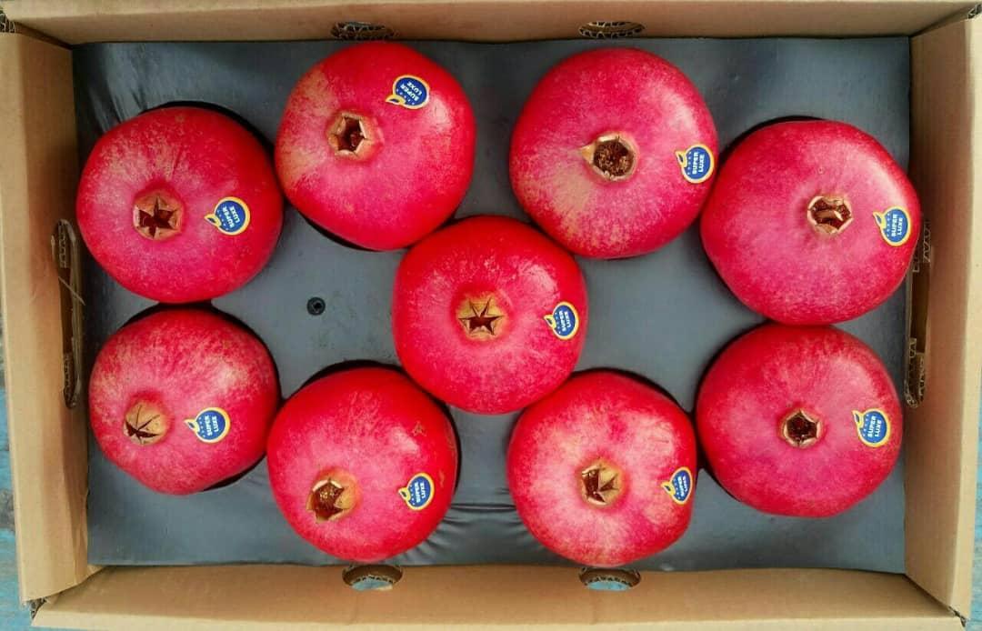 Pomegranate Supplier, Pomegranate Wholesalers, Pomegranate Wholesale, Iran Pomegranate Wholesaler, Iran Pomegranate Supplier, Iran Pomegranate Suppliers, Iranian Pomegranate Price